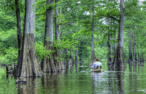 3 Things You Should Know about Kayaking, Check out no.2!