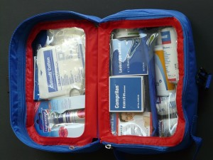 Basic Must Haves While Travelling medicine kit