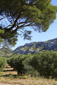 Explore the Beauty of South of France! 3 Tips to Get the Most Out of Your Trip in the Coastline - Provence