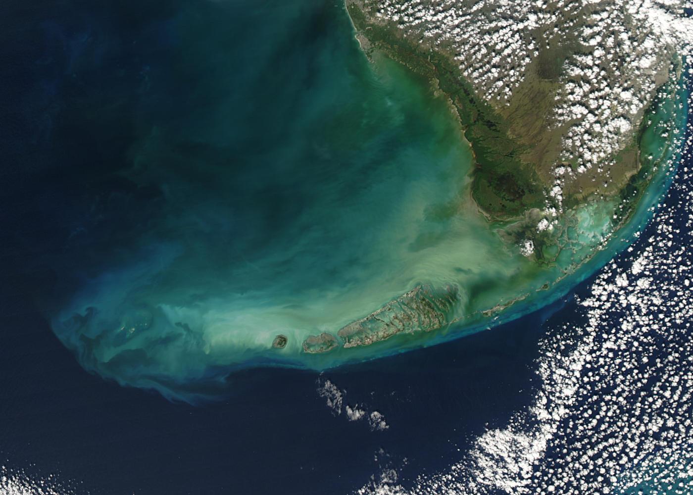 Florida Keys Scuba Diving