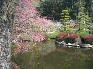 Gardens of Japan 9 Amazing Gardens You Must See! - Kairakuen