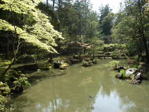 Gardens of Japan 9 Amazing Gardens You Must See! - Kokedera