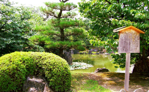 Gardens of Japan 9 Amazing Gardens You Must See! - Nijo Castle