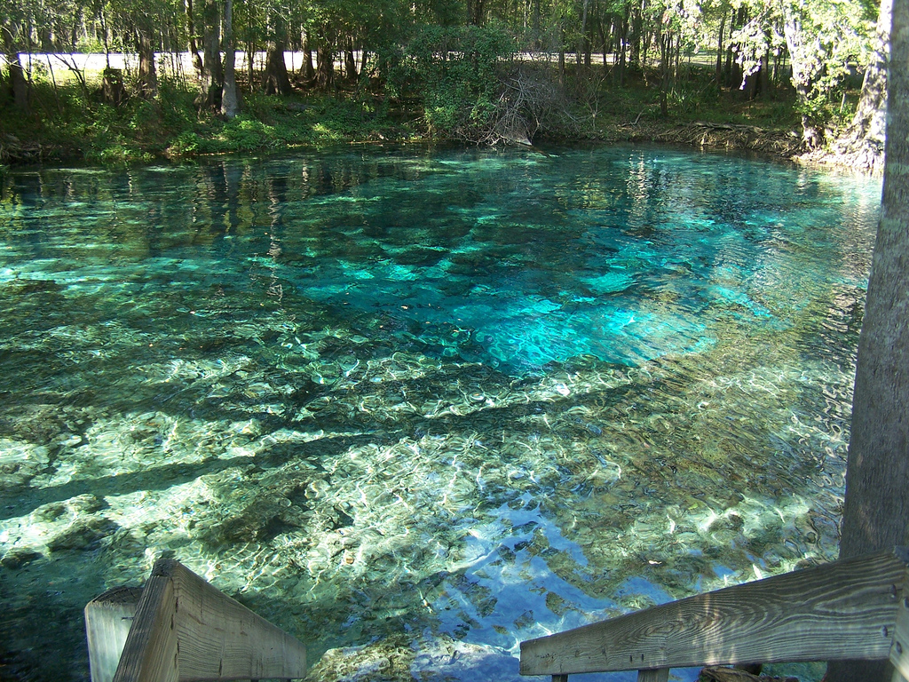 Ginnie springs scuba diving