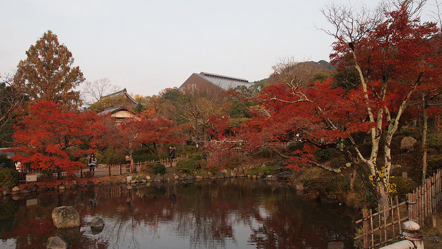 The Colors of Autumn 7 Places to Enjoy the Autumn Scenery in Japan - Arashiyama