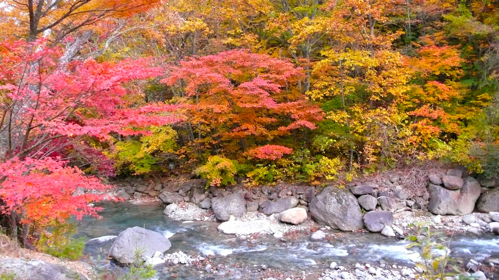The Colors of Autumn 7 Places to Enjoy the Autumn Scenery in Japan