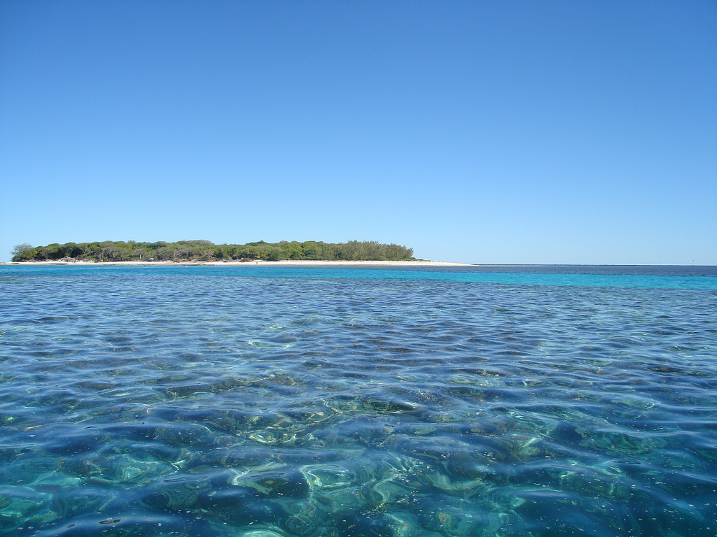 Lady Musgrave Island, Queensland