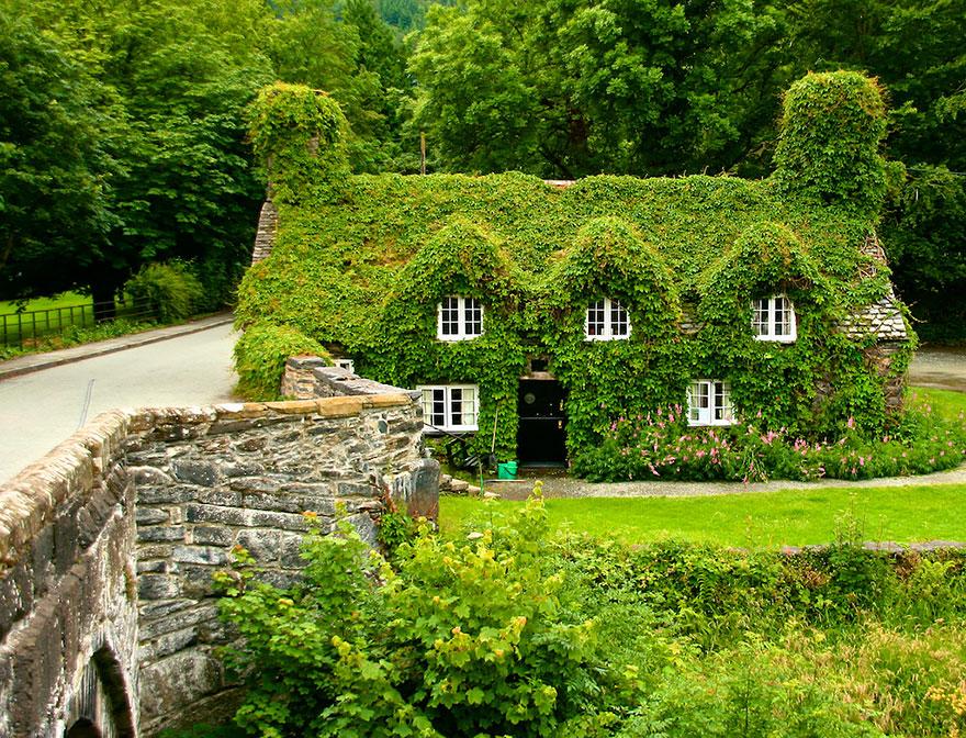 Tu Hwnt I'r Bont Tearoom in Llanrwst, North Wales