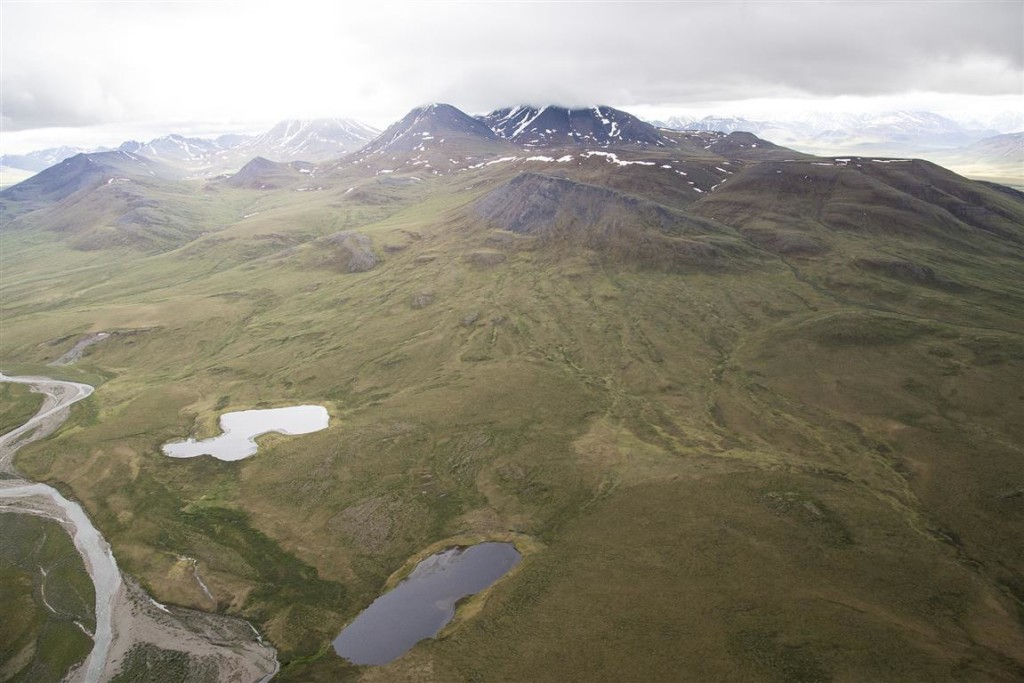 Central Arctic Management Area WSA
