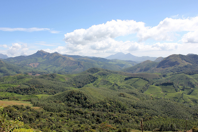 Eravikulam National Park in Munnar